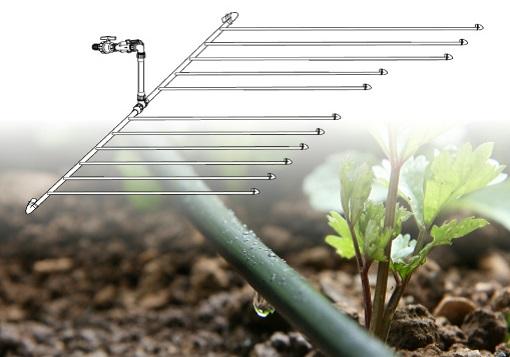 Kapljične vrtne cevi z namakalnim sistemom